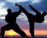 Küzdősportok
